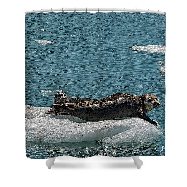 Staying Cool Shower Curtain