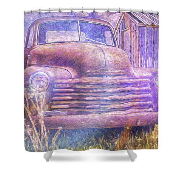 Stepside Art  Shower Curtain