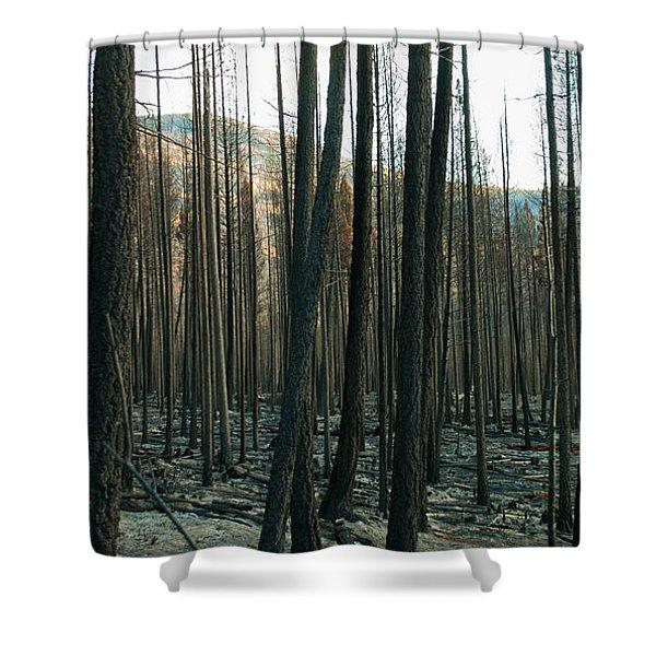 Stickpin Shower Curtain
