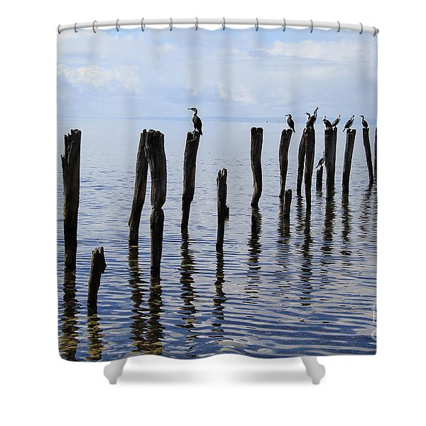 Sticks Out To Sea Shower Curtain