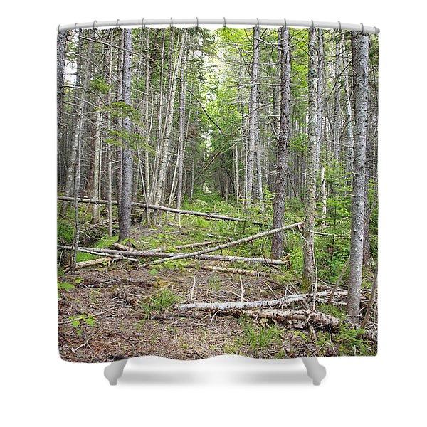Stillwater Junction - White Mountains New Hampshire  Shower Curtain