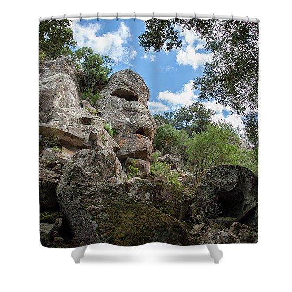 Stone Mask Shower Curtain