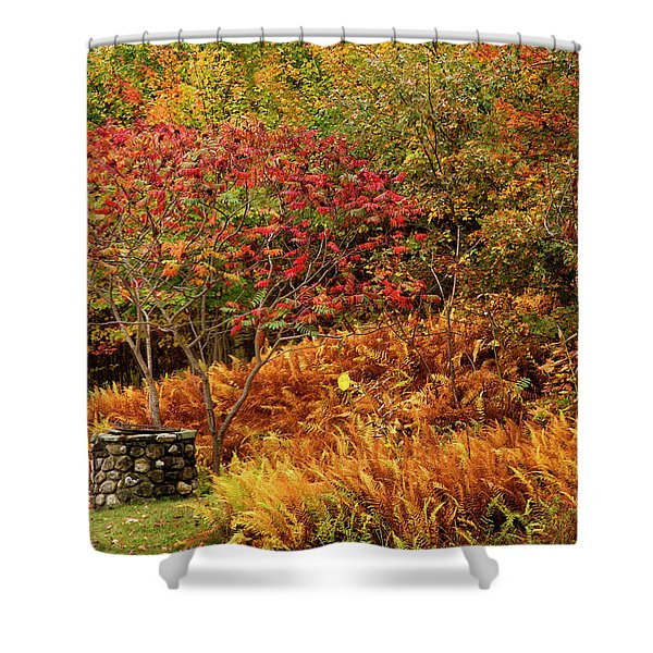 Stone Well Shower Curtain
