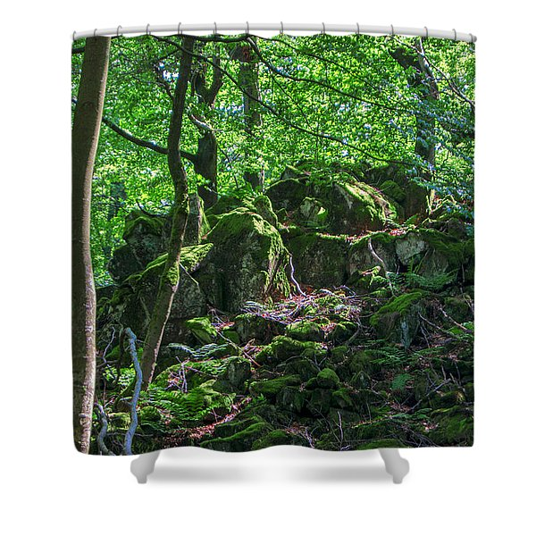 Stones In A Forest In Vogelsberg Shower Curtain