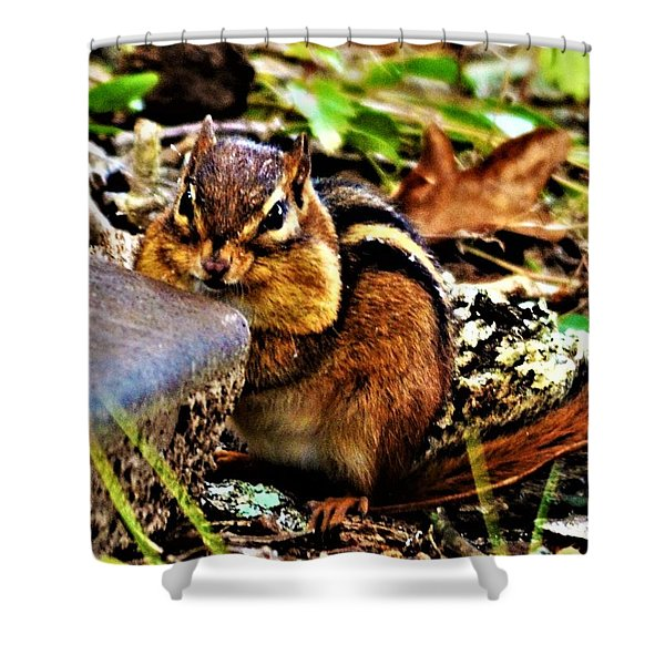 Storing For Winter Shower Curtain