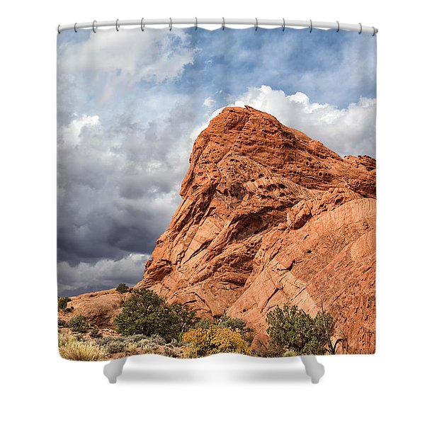 Stormy Desert Afternoon Shower Curtain