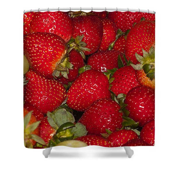 Strawberries 731 Shower Curtain
