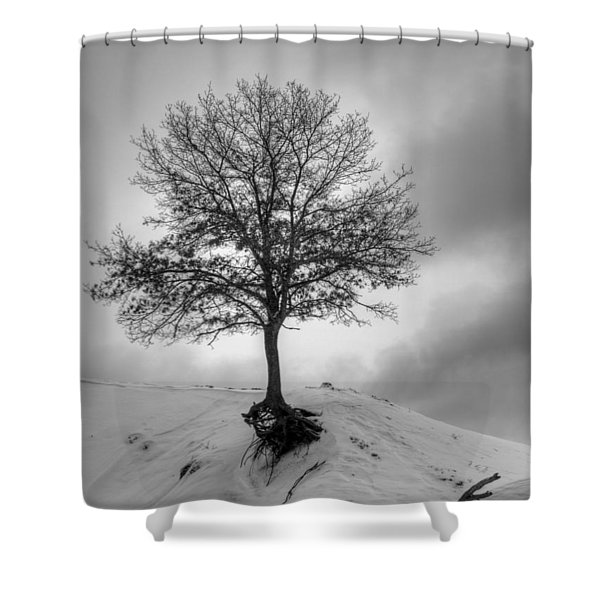 Strength And Hope 2011 Shower Curtain