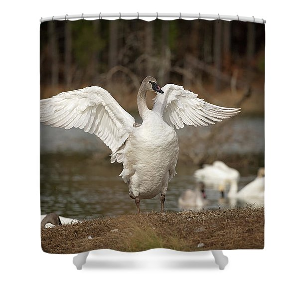 Stretch Your Wings Shower Curtain