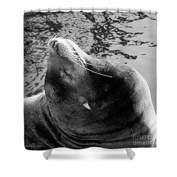 Stretch, Black And White Shower Curtain