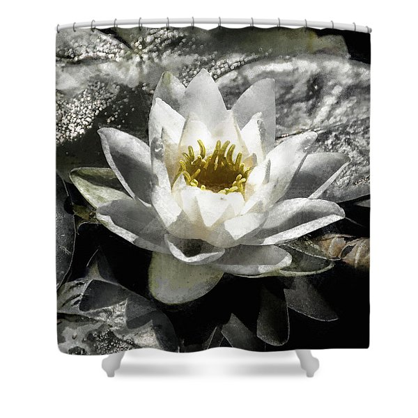 Strokes Of The Lily Shower Curtain