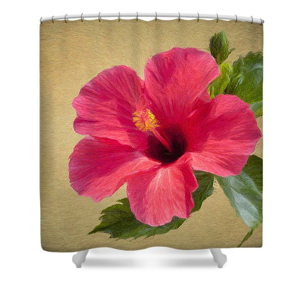 Study In Scarlet Shower Curtain