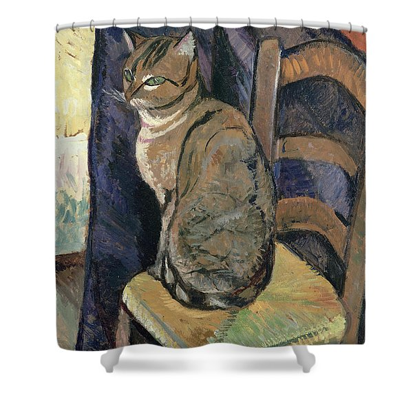 Study Of A Cat Shower Curtain