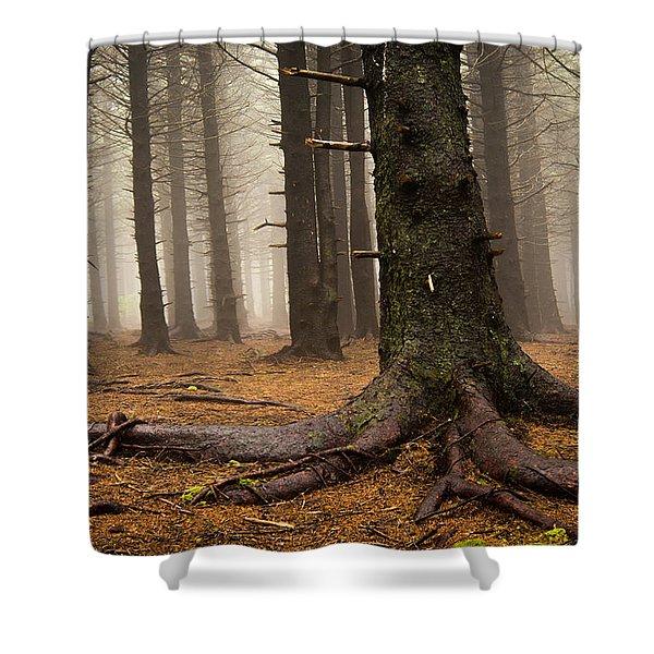 Sturdy Shower Curtain