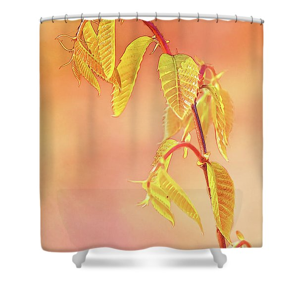 Stylized Baby Chestnut Leaves Shower Curtain