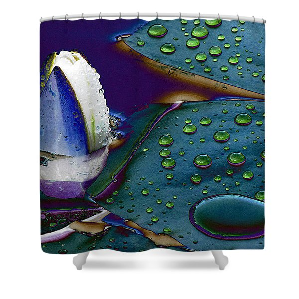 Subdued Light And Daydreams Shower Curtain