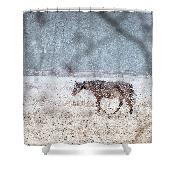 Suburb Of Hamburg.snow Shower Curtain