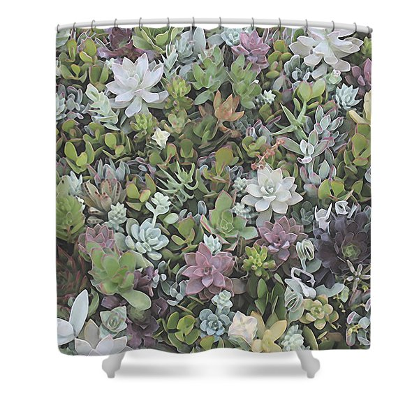 Succulent 8 Shower Curtain