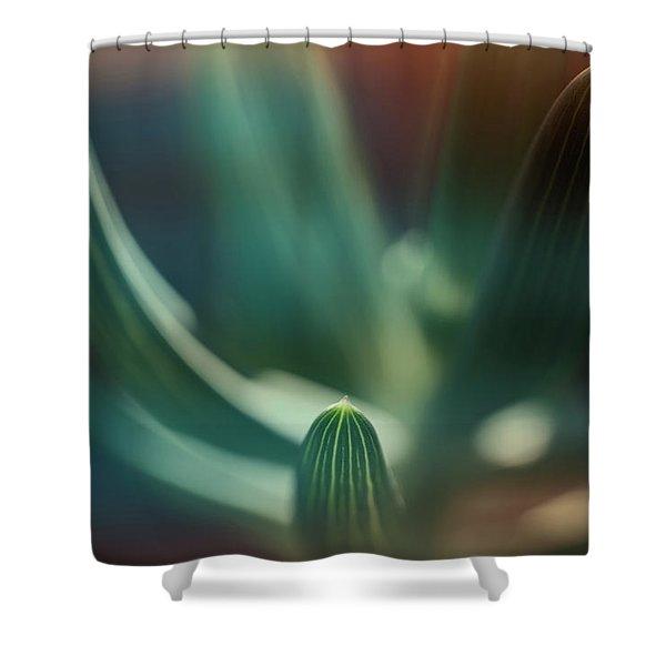 Succulent Emerging Shower Curtain
