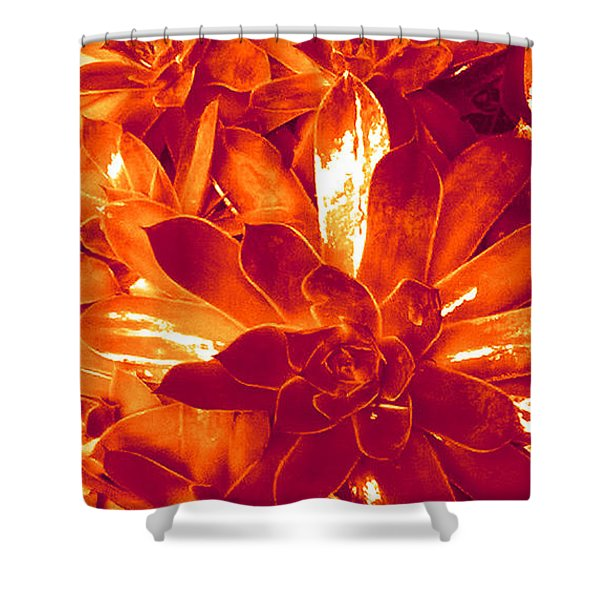 Succulents #1 Shower Curtain