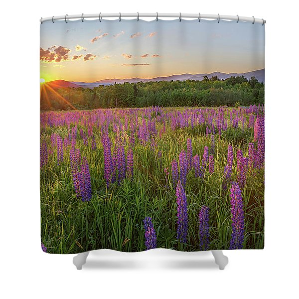 Sugar Hill New Hampshire Lupine Shower Curtain