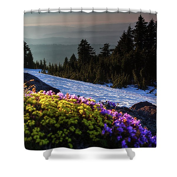 Summer And Winter Shower Curtain