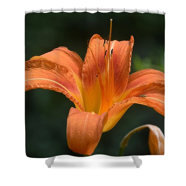 Summer Bloom-3 Shower Curtain