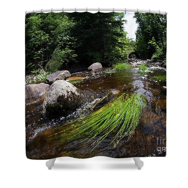 Summer Flow Of Water Near Rangeley Maine  -63322 Shower Curtain