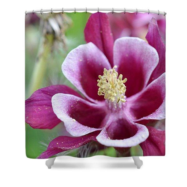 Summer Flower-2 Shower Curtain