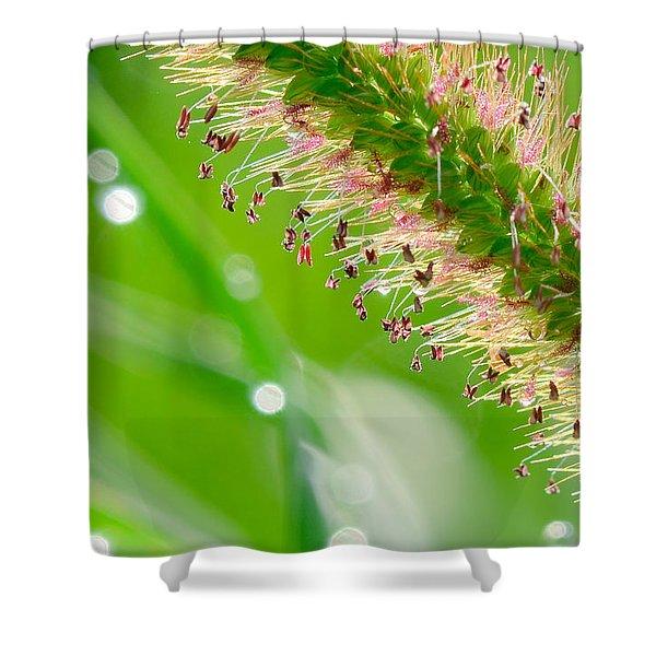 Summer Grass Shower Curtain