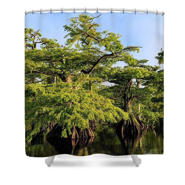 Summer Greens Shower Curtain