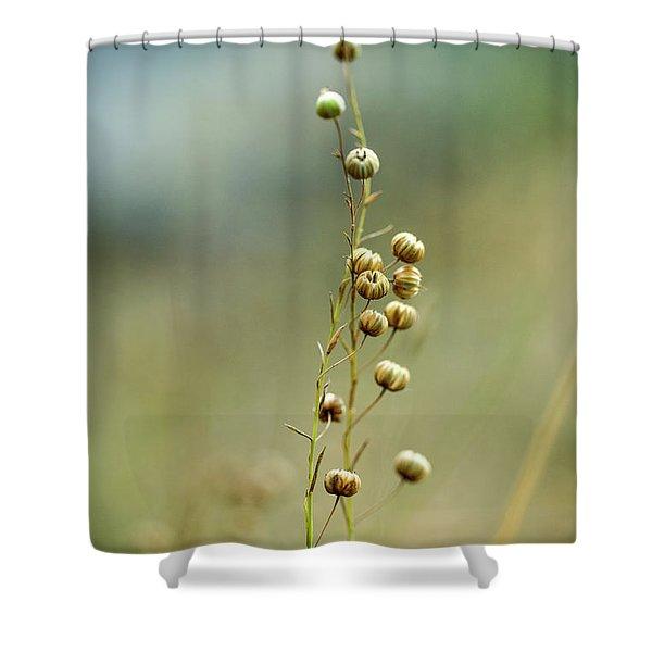 Summer Meadow Shower Curtain