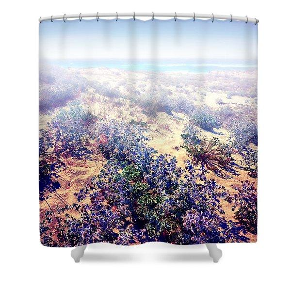 Sun And Wind Shower Curtain