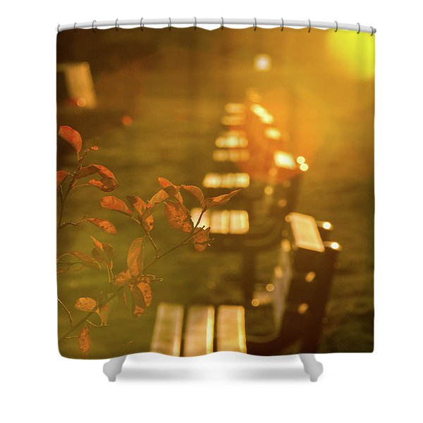 Sun Drenched Bench Shower Curtain