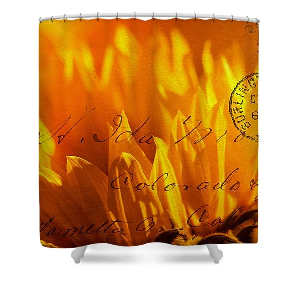 Shower Curtain featuring the photograph Sun Flower Envelope by Michael Hope