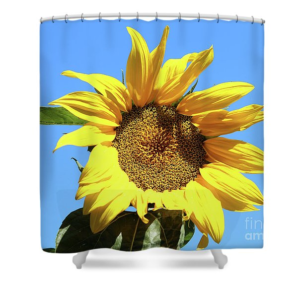 Sun In The Sky Shower Curtain