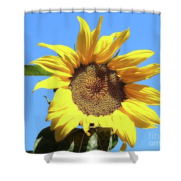 Sun In The Sky Shower Curtain