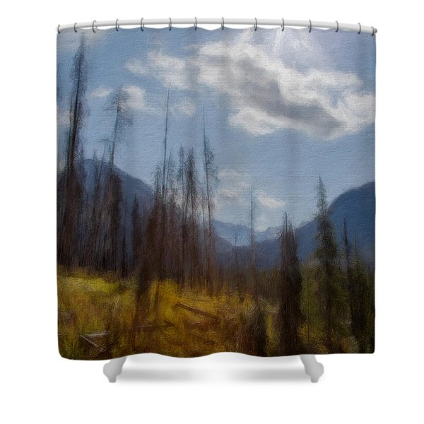 Sun Light In The Forest Shower Curtain