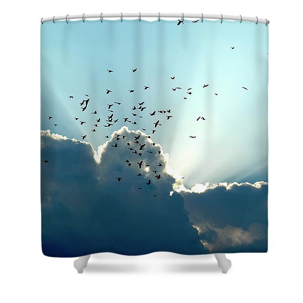 Shower Curtain featuring the photograph Sun Ray Aerobatics Blue Sky by Carolyn Marshall