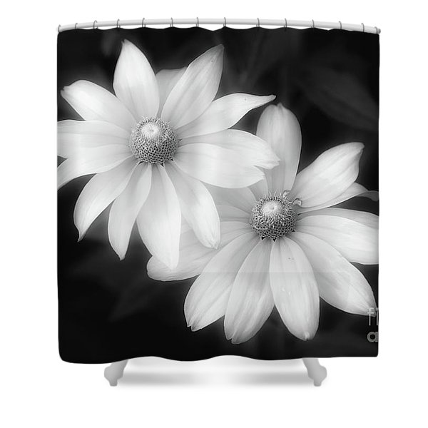 Sun Sisters In Black And White Shower Curtain