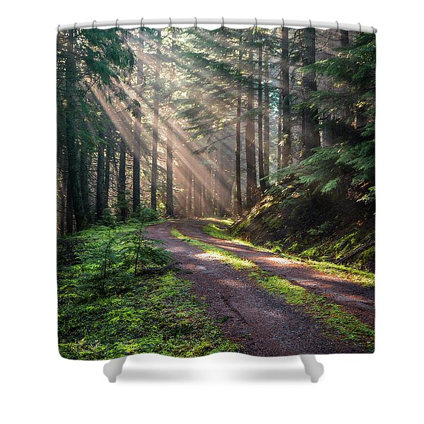 Sunbeam In Trees Portrait Shower Curtain