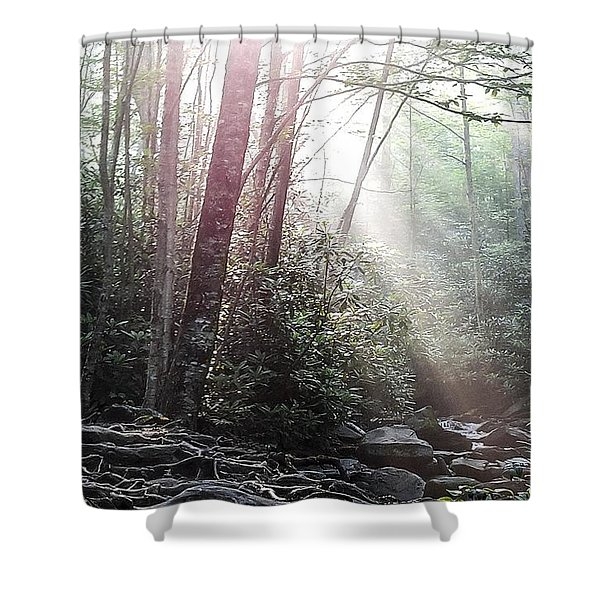 Sunbeam Streaming Into The Forest Shower Curtain