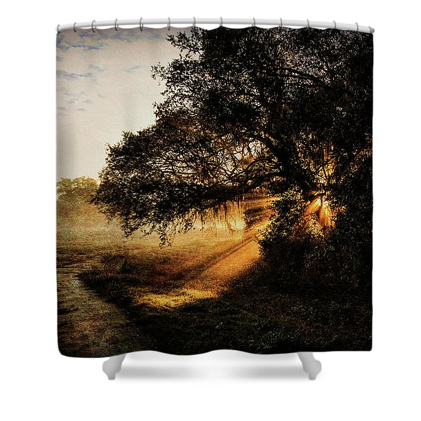 Sunbeam Sunrise Shower Curtain