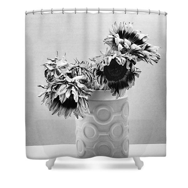 Sunflower Circle Of Light Shower Curtain