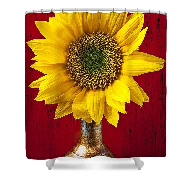 Sunflower Close Up Shower Curtain
