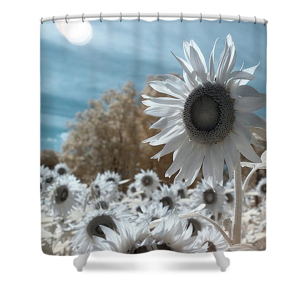 Sunflower Infrared  Shower Curtain