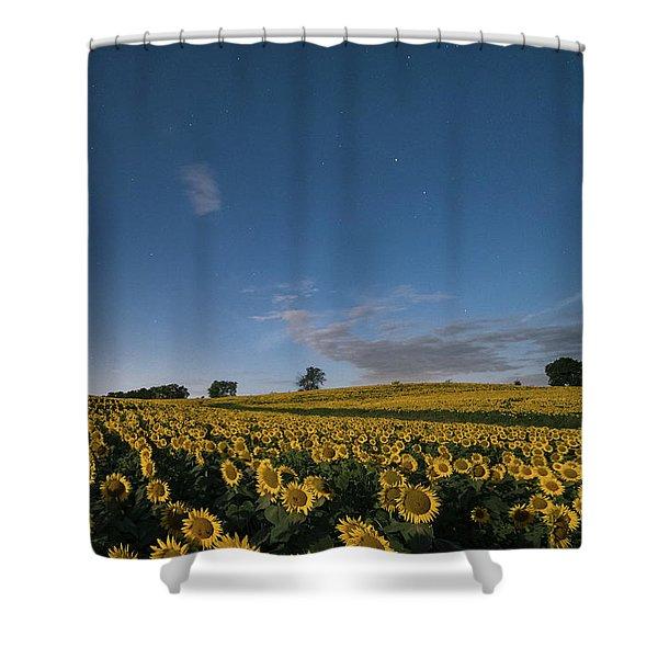 Sunflower Nights Shower Curtain