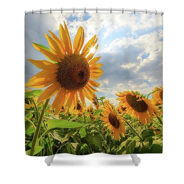 Sunflower Star Shower Curtain