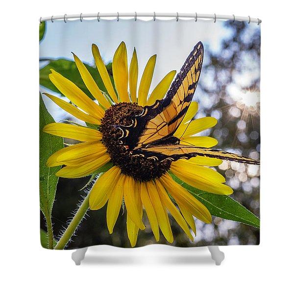 Sunflower Swallowtail Shower Curtain