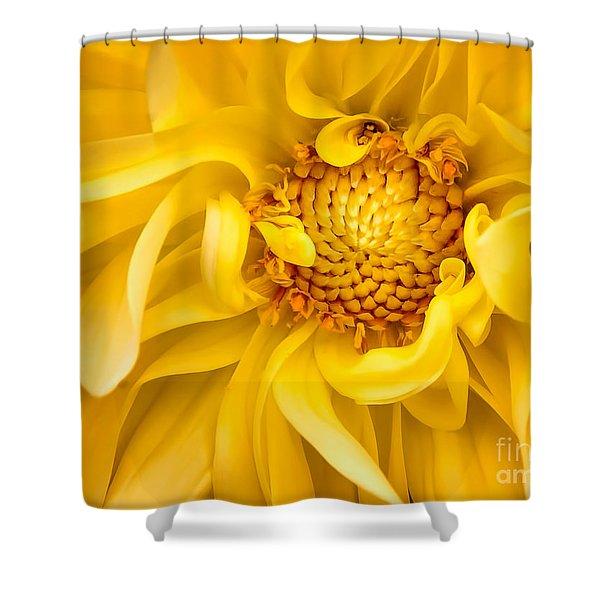 Sunflower Yellow Shower Curtain